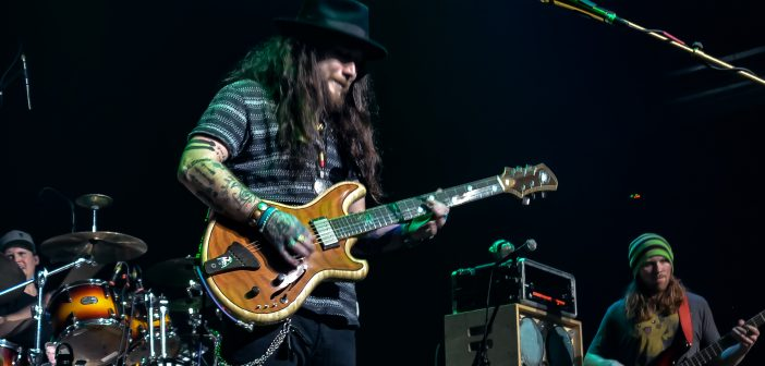 Twiddle at The Space