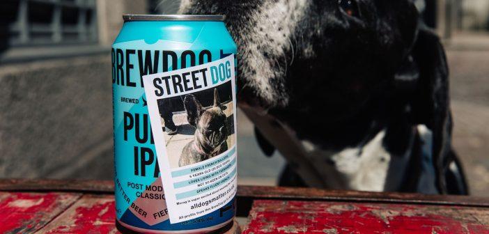 BrewDog's Street Dog Punk IPA helps #AllDogsMatter